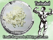 Best Legal Anbolic Steroid Powder Turinabol CAS 2446-23-3 Chlorodehydromethyl Testosterone for sale