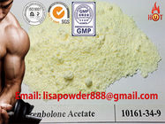 China Healthy Trenbolone Acetate Hormone Powder 10161-34-9 , Protein Assimilation Hormonal distributor