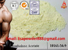 China Pharmaceutical Raw Material Anabolic Steroids Trenbolone Acetate Powder CAS 10161-34-9 distributor