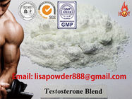 China Sustanon 250 Testosterone Blend Steroid Hormone Powder No Side Effects CAS 58-22-0 distributor