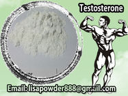 Best Oil Based Testosterone Enanthate Dosage 500mg/Ml Anabolic Androgen Steroid Hormone for sale