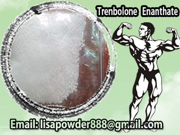 China White Powder Pharmaceutical Raw Material Testosterone Cypionate For Men Muscle Growthon sales